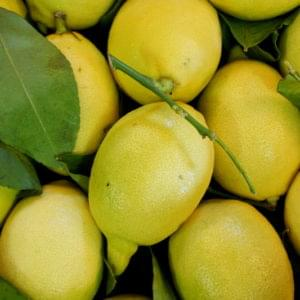 Limoni 500g