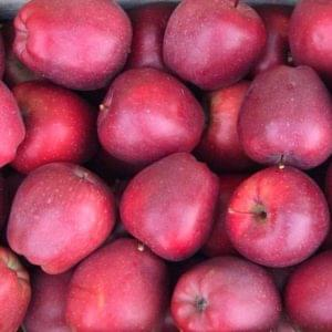Mele Red Delicious 500g