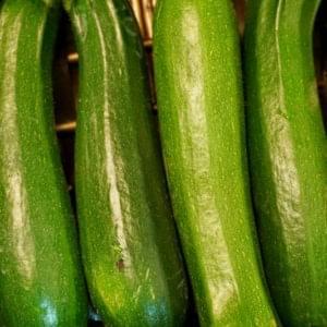 Zucchine Scure 500g