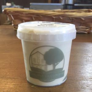 Yogurt Alla Nocciola Senza Lattosio